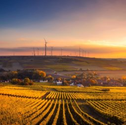 scenic-view-of-agricultural-field-against-sky-during-sunset-325944